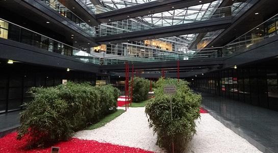 Campus_Lille