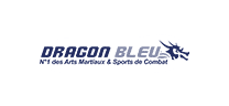 Logo Dragon Bleu
